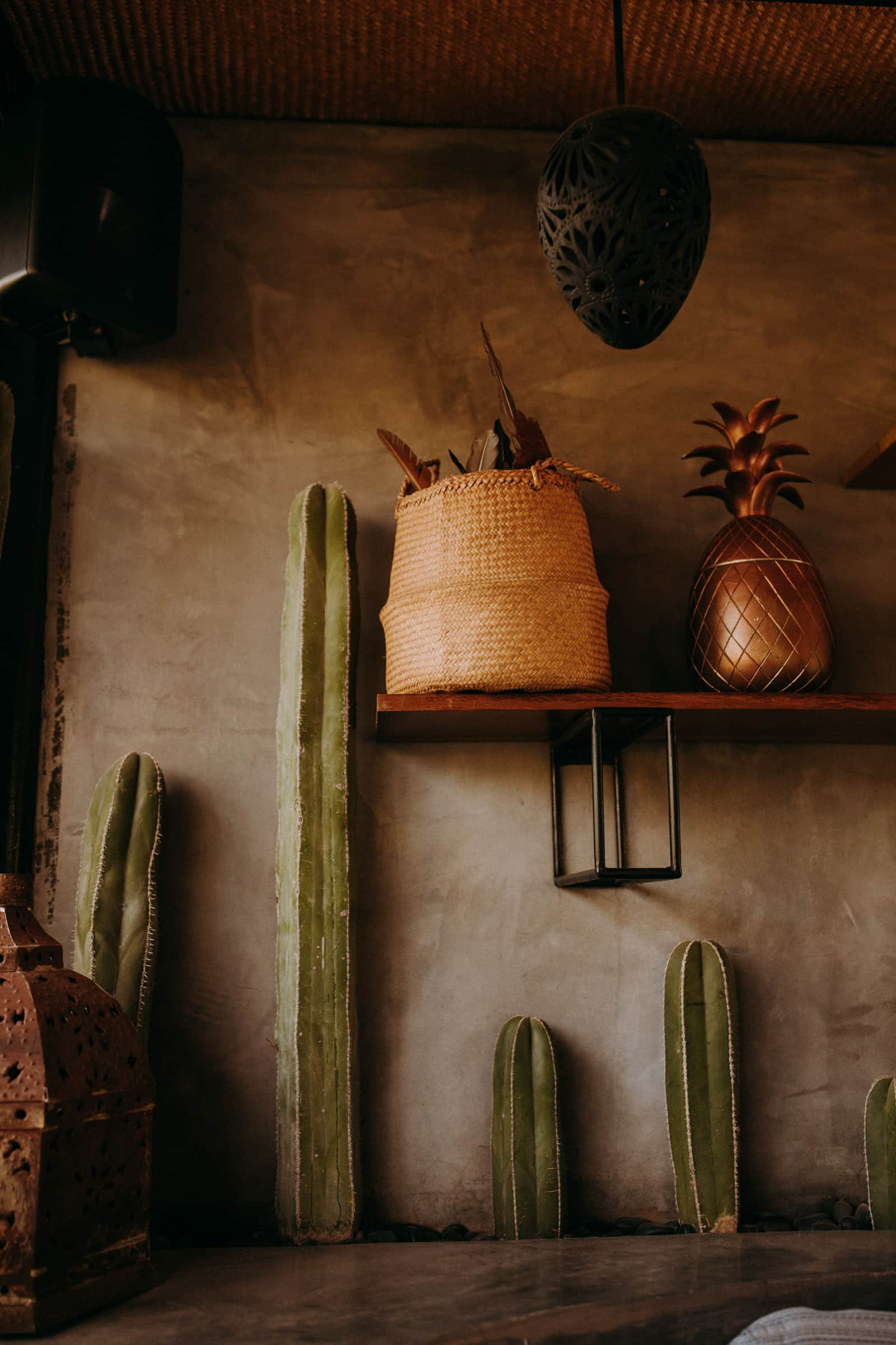The acre baja wedding decoration includes cacti, a shelf and potted plants.