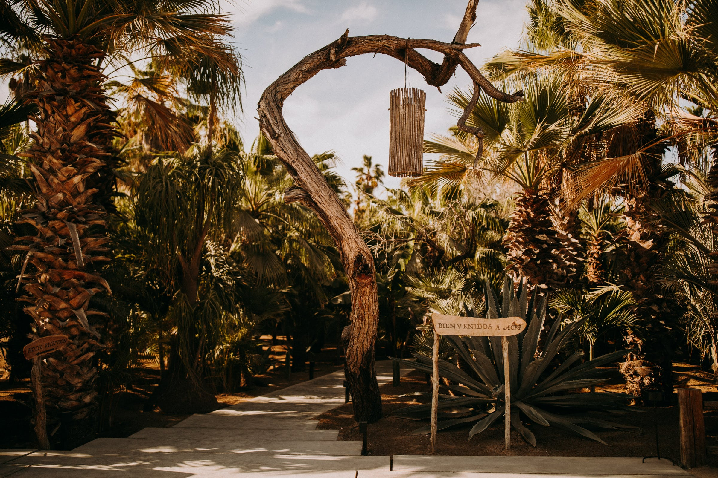 The acre baja front entrance features palm trees and rustic wooden signs.